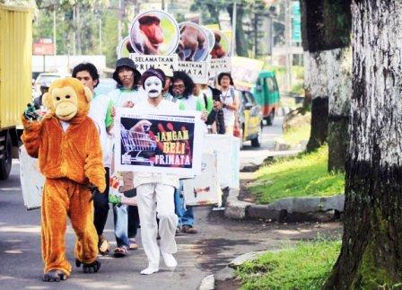 Peringatan Hari Primata - Profauna