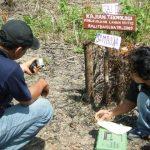 Identifikasi Kerusakan Lingkungan