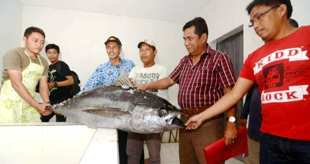 ekspor ikan