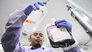 Stok Darah PMI