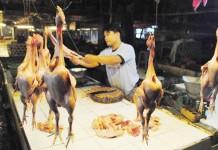 Daging Ayam