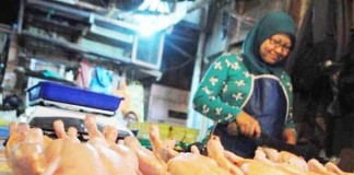 Pedagang Daging Ayam Mulai Berjualan