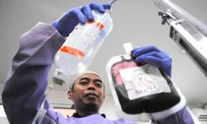 stok Darah di PMI