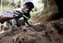 Penemuan Fosil Manusia Purba