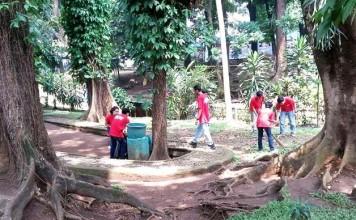 ACE Istana Plaza