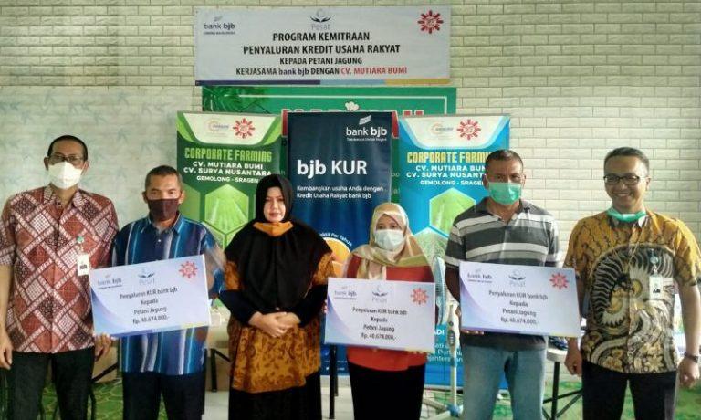 bank bjb Salurkan KUR kepada Petani di Majalengka ...
