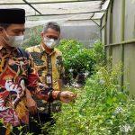 Bupati Bandung Dadang Supriatna, melihat tanaman obat dan buah-buahan yang ada di greenhouse milik Dinas Pertanian Kabupaten Bandung. (Yully S Yulianty/Jabar Ekspres)