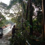 Beberapa tumbangnya pohon dan kendornya kabel listrik akibat hujan angin kencang di Jalan Rd. Demang Hardjakusumah, Dok. Intan Aida/Jabar Ekspres