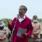 Tangkapan Layar - Presiden Jokowi usai menanam Mangrove bersama masyarakat di Kabupaten Bengkalis, Riau, Selasa (28/9). (ANTARA/Indra Arief)