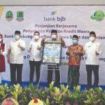 MESRA: Perjanjian kerjasama Program Kredit bjb Mesra yang merupakan kolaborasi bank bjb dengan Pemerintah Provinsi Jawa Barat yang menyasar kelompok masyarakat hingga ke daerah. Kredit Mesra bjb membantu kehidupan masyarakat terhindar dari rentenir.