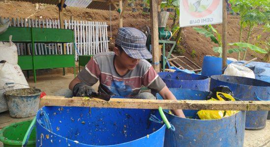 Warga Tengah Mencacah Sampah Organik untuk Makan Maggot